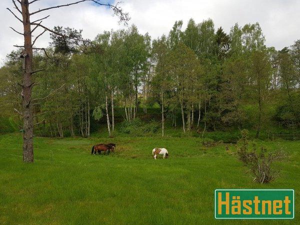 nskar hyra hus/lgenhet i Fjrs i Kungsbacka - Blocket
